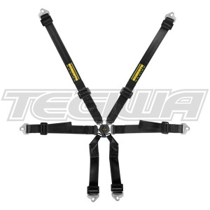 SCHROTH CLUBMAN 2X2 6 POINT HARNESS